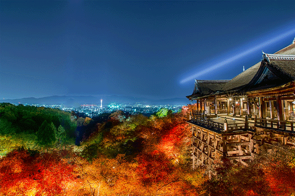 kyoto-autumn-leaves1