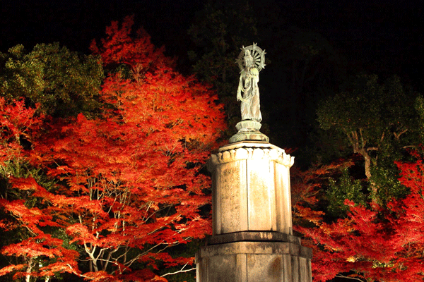 kyoto-autumn-leaves7